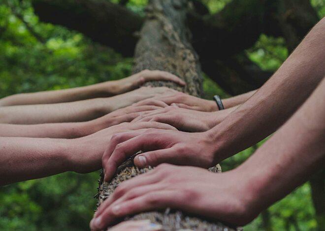 Handen op boom-gekropt